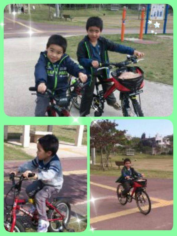 自転車~♪