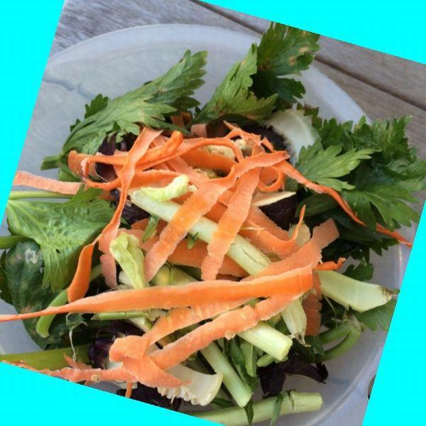 肥料用の野菜